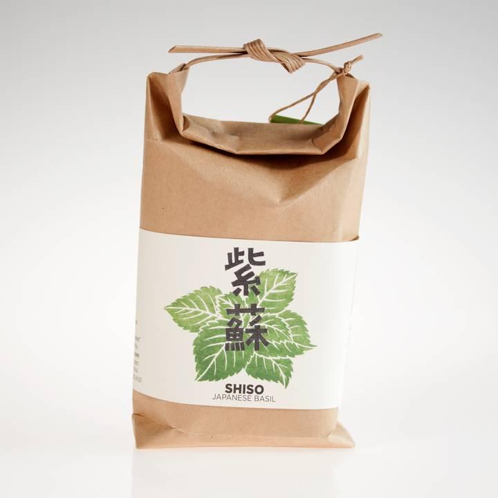 Image of Japanese Shiso Basil Seeds