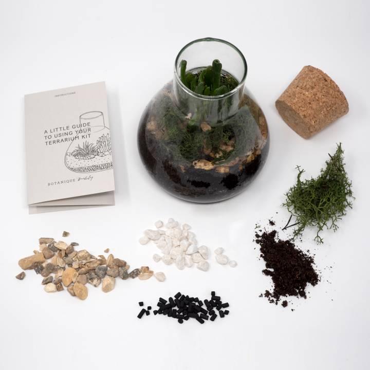 Image of Terrarium Kit