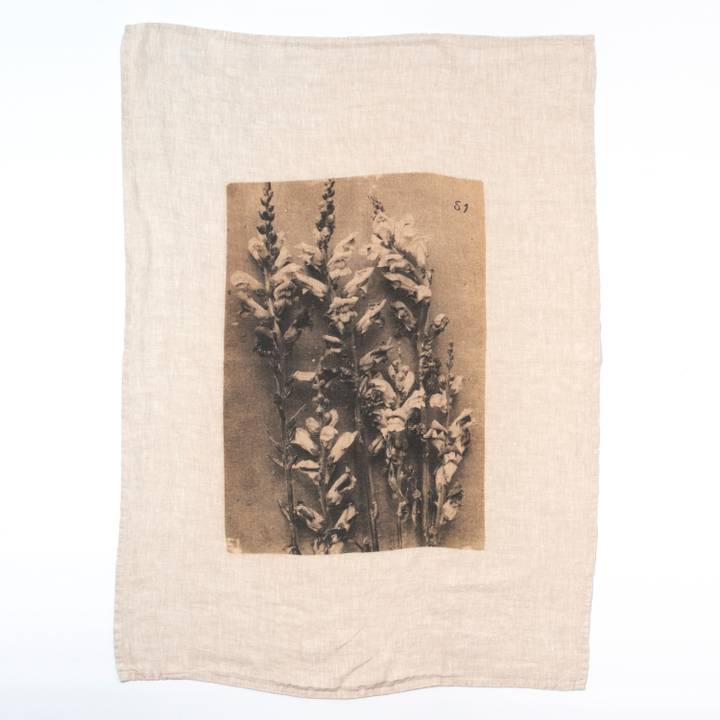 Image of Ancient Flower Tea Towel