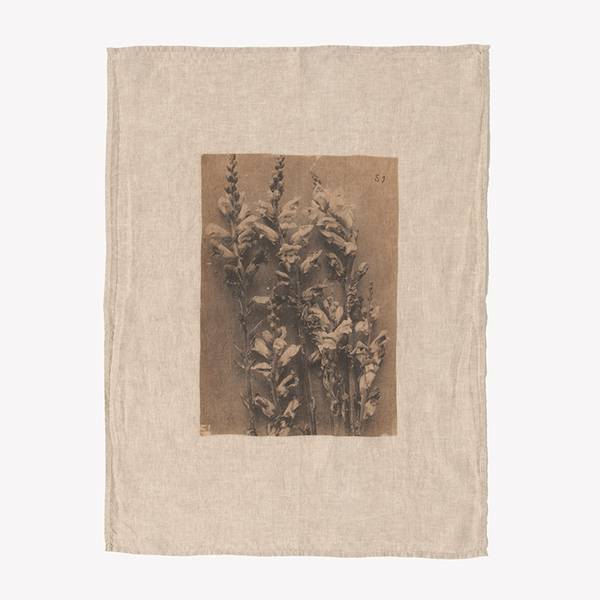 Image of Ancient Flower Tea Towel