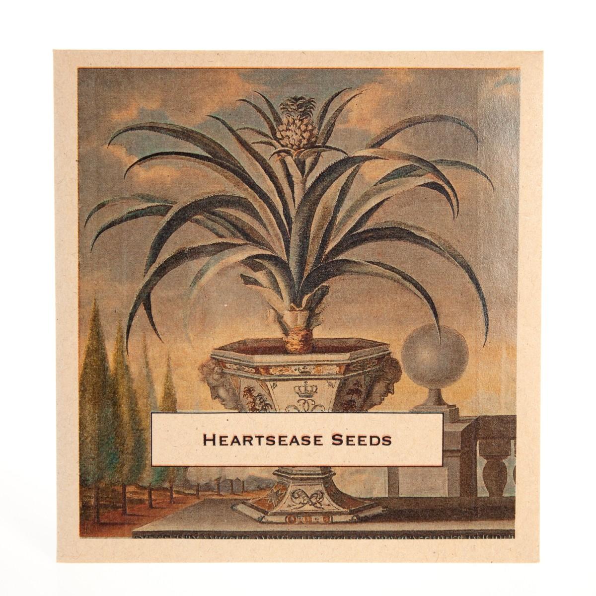 Photo of Heartsease Seeds