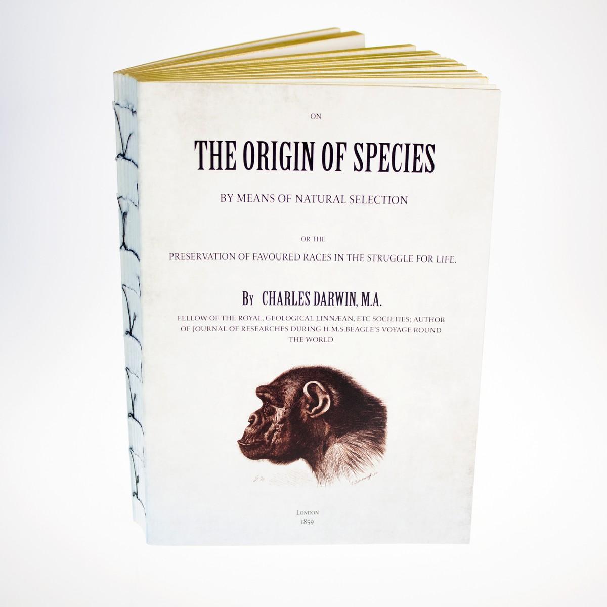 Photo of Origin of Species Notebook