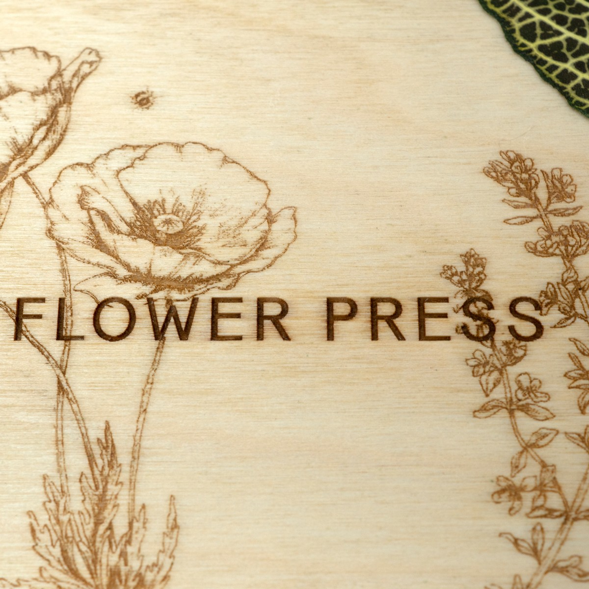 Photo of Flower Press Kit