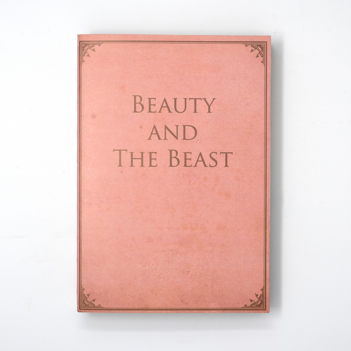Photo of Beauty and the Beast Notebook