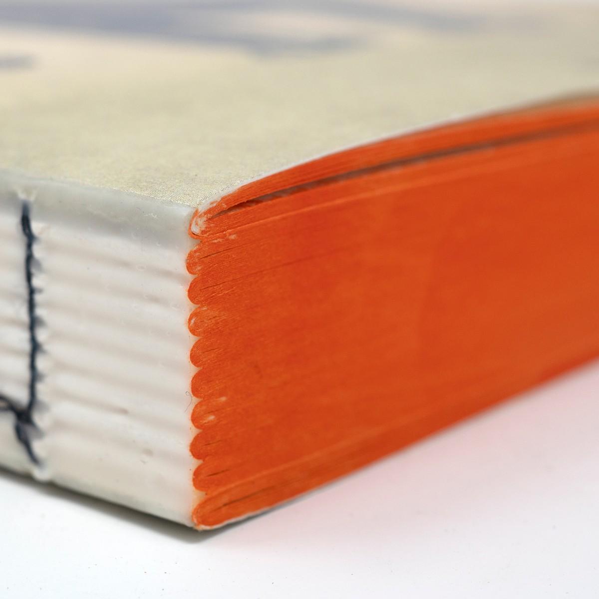 Photo of Jungle Book Notebook