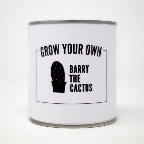 Image of Barry the Cactus Grow Kit