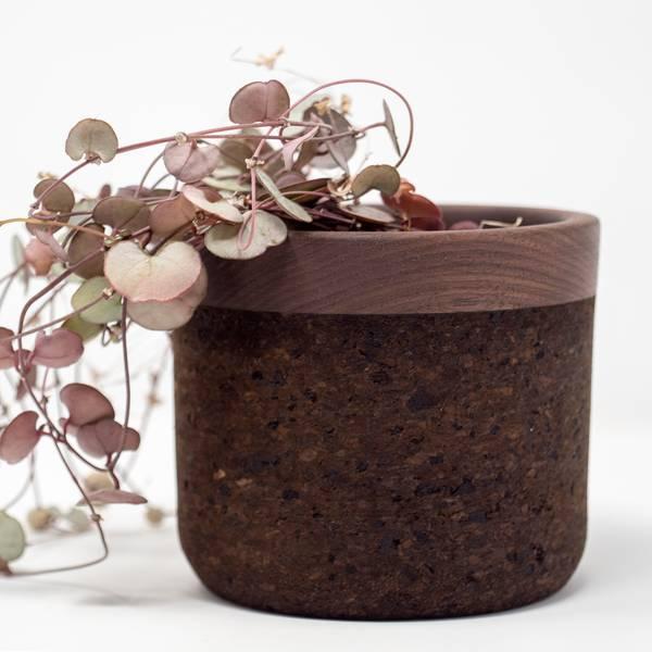 Image of Walnut Planter