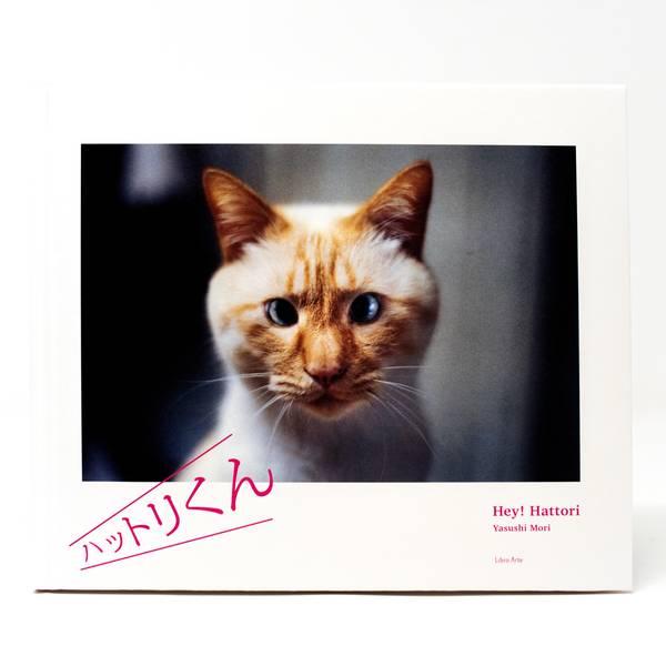 Image of Hey! Hattori Photobook