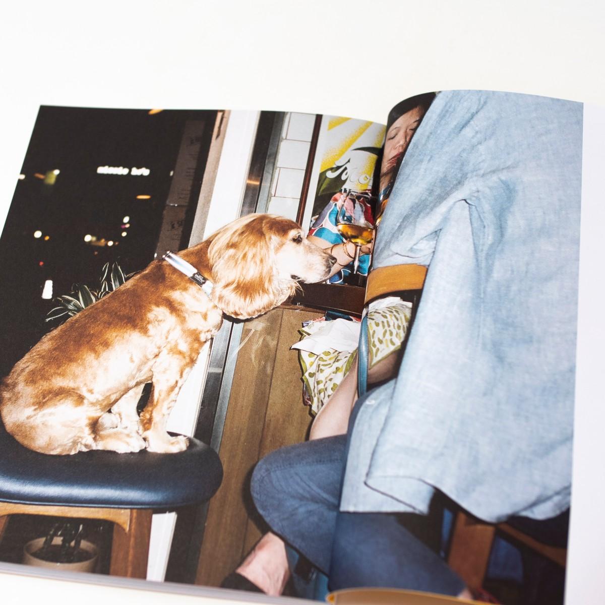 Photo of Dog Magazine Issue 4