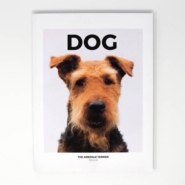 Image of Dog Magazine Issue 6