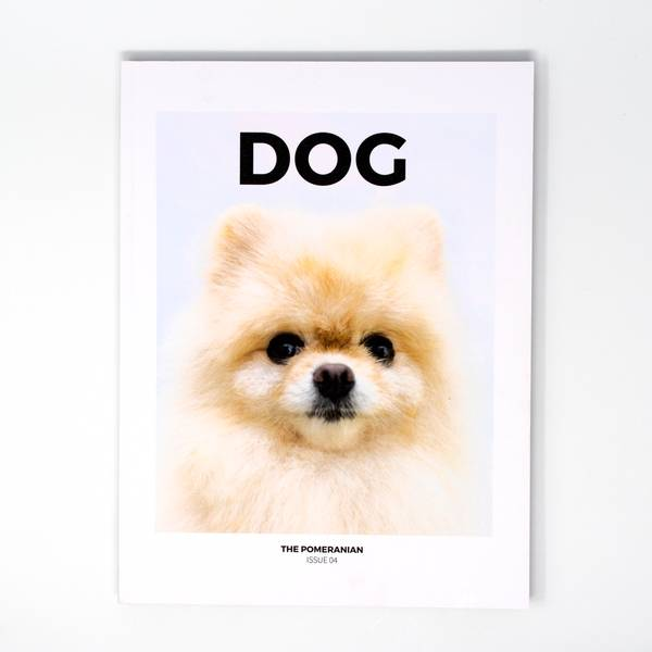 Image of Dog Magazine Issue 4