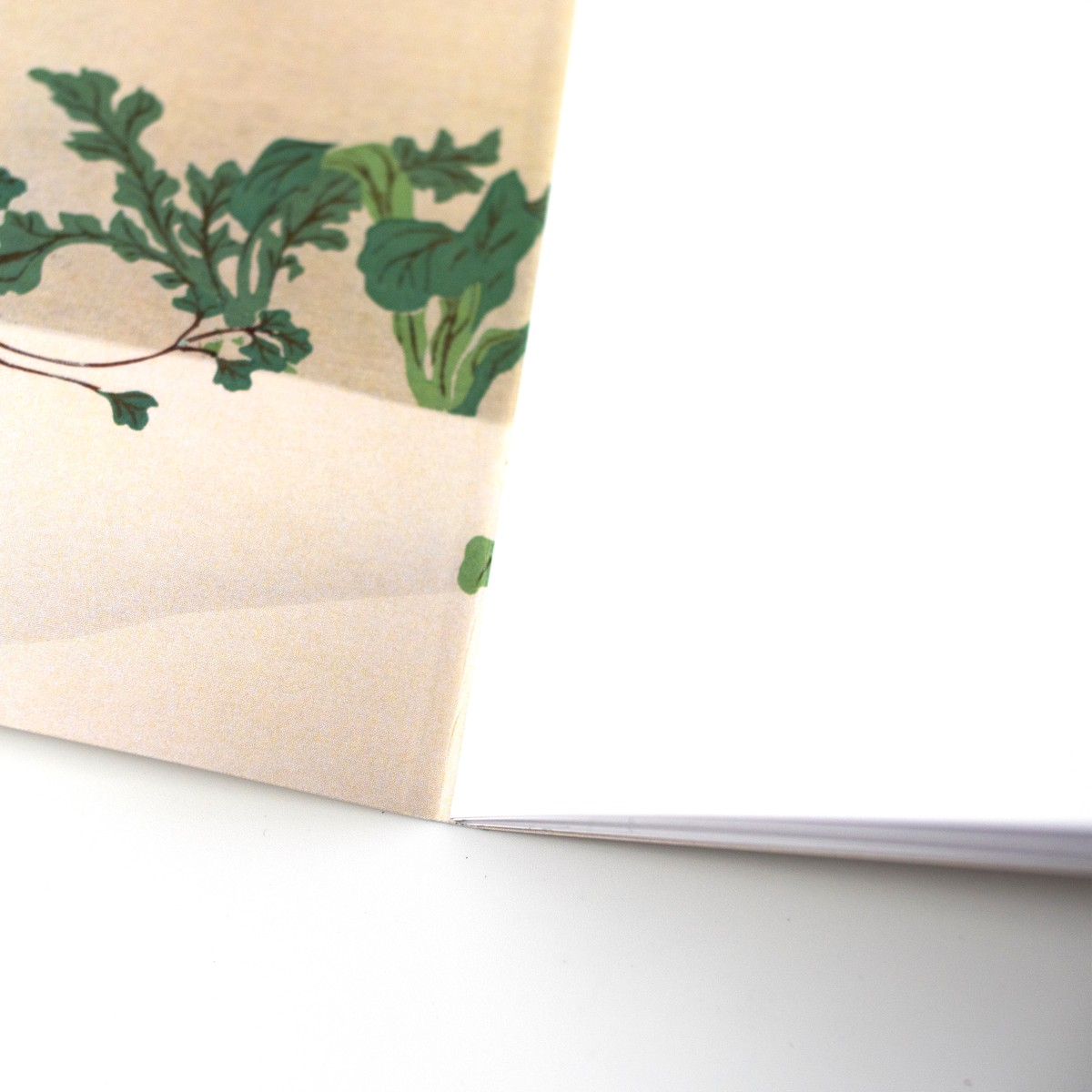 Photo of Home Comforts Illustrated Notebook