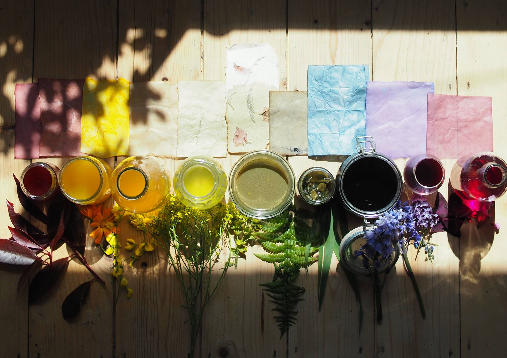 Image of Doing | Natural Paper Dyeing