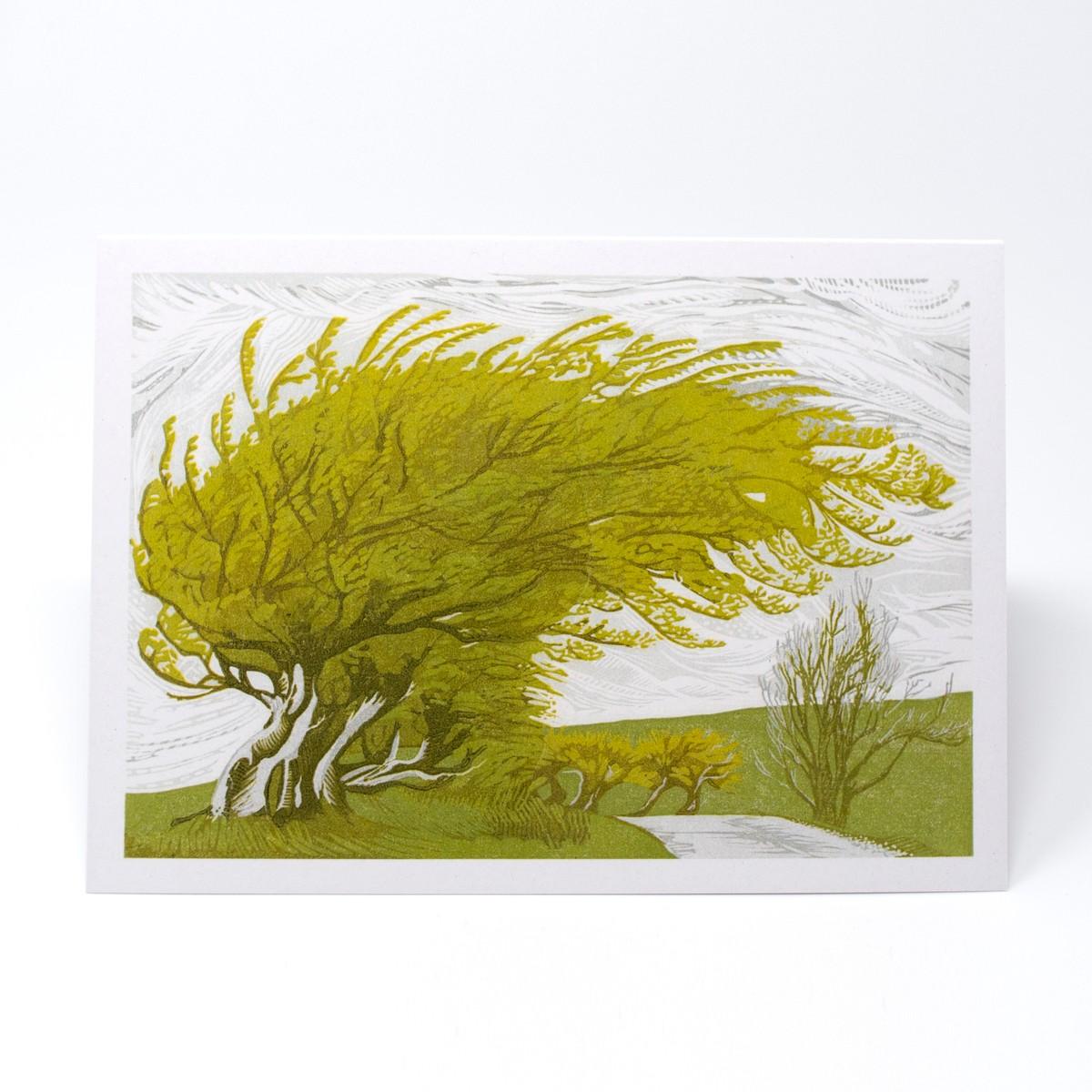 Photo of Windswept Greeting Card