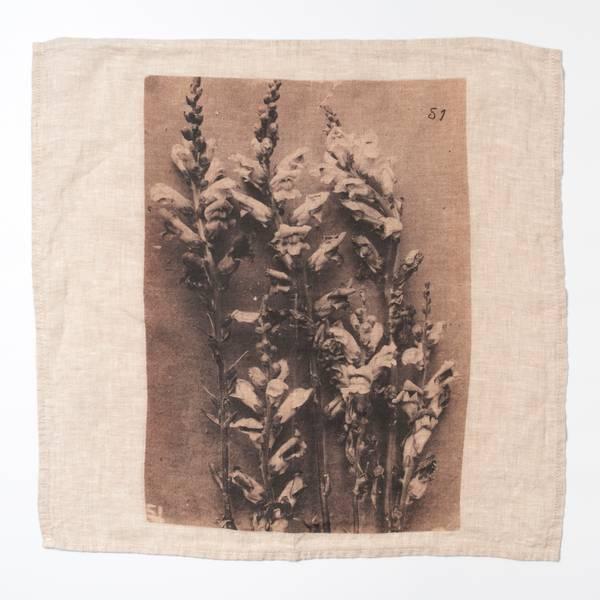 Image of Ancient Flower Napkin