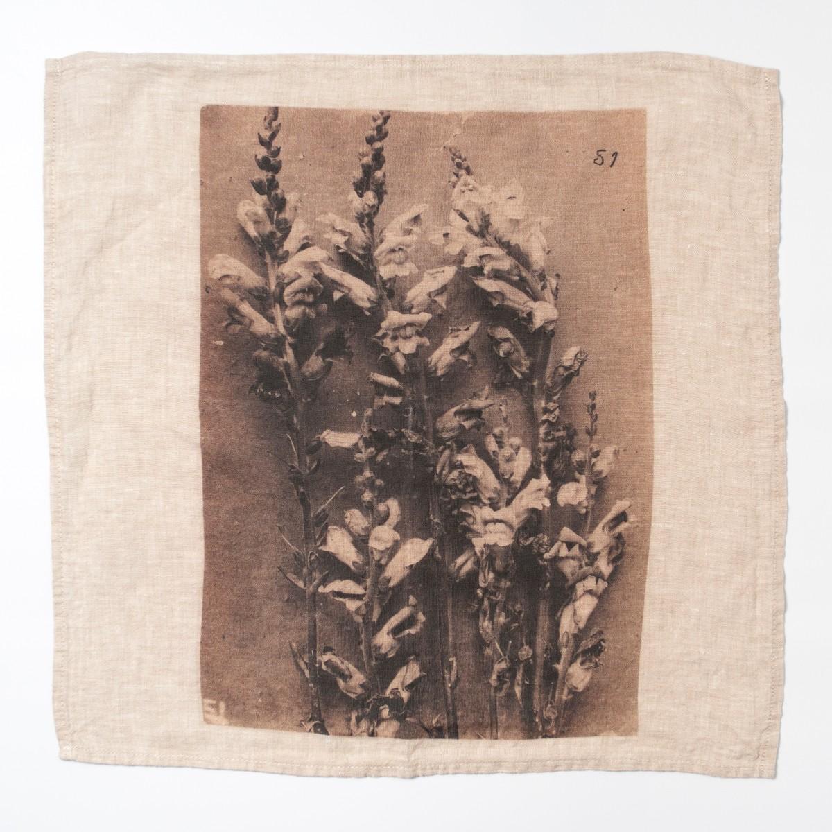 Photo of Ancient Flower Napkin