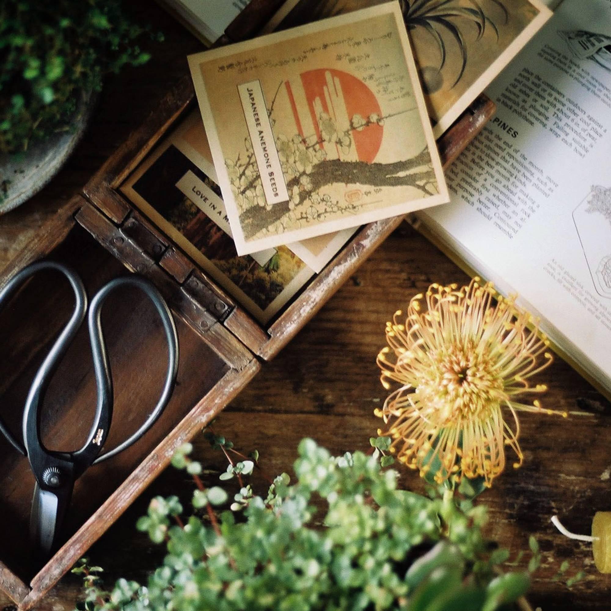 Image of Gardening Gifts