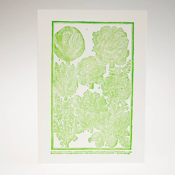Image of Cabbages Letterpress Greeting Card