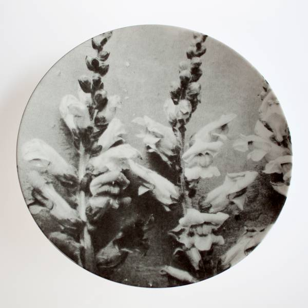 Image of Ancient Flower Plate