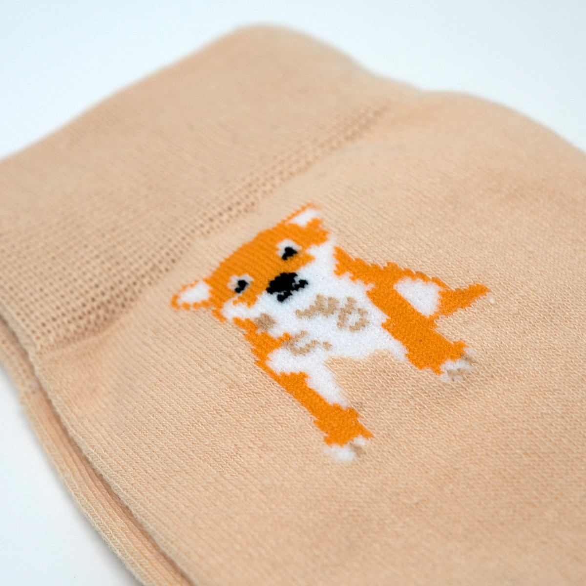 Photo of Shiba-inu Socks Cream