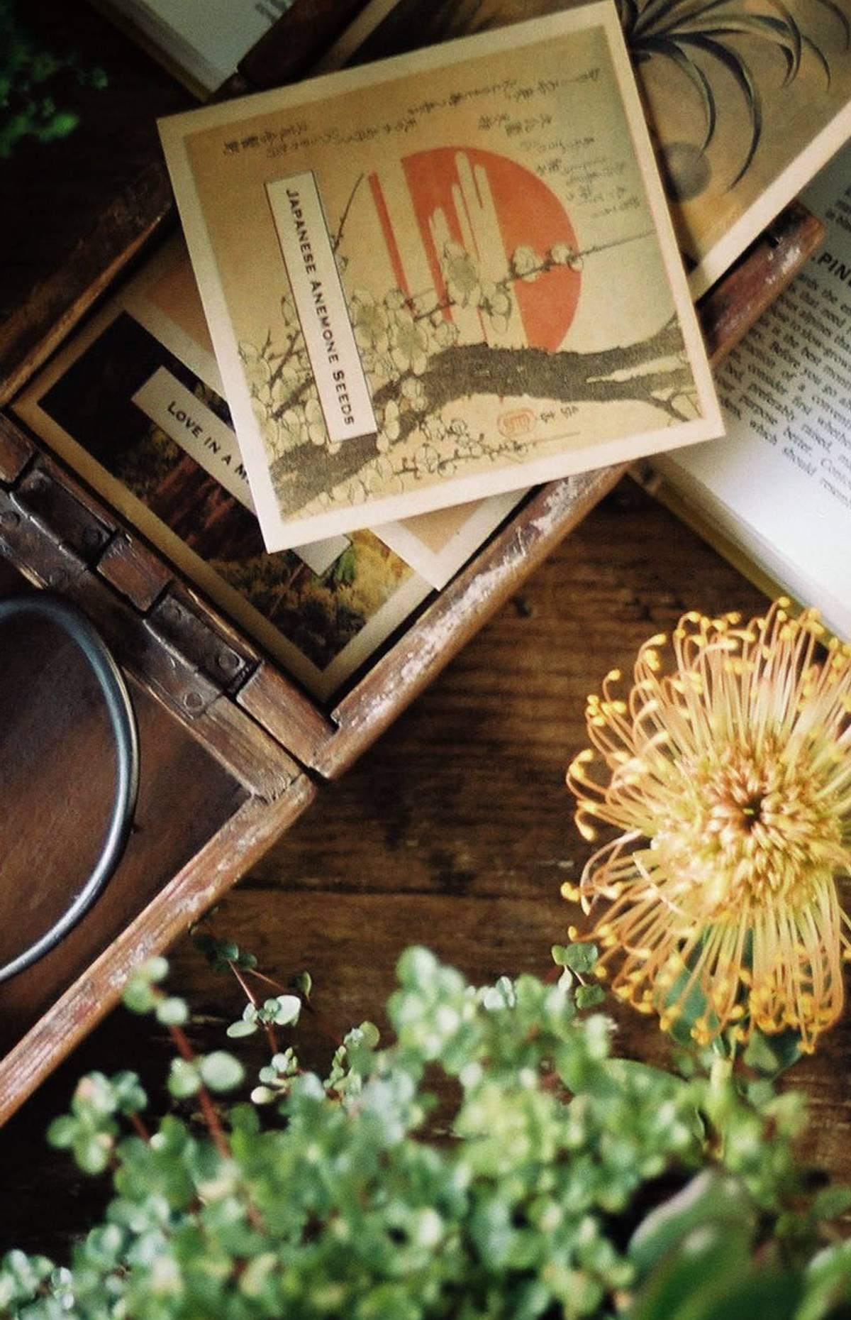 Image of Japanese Gardening Gifts